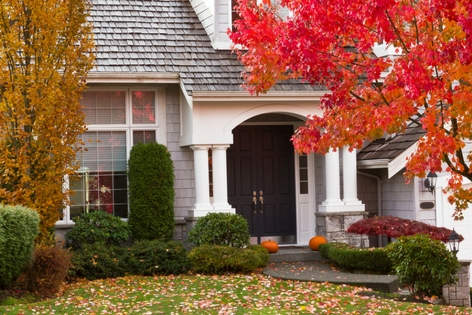 fall pest control tips vancouver - assured environmental